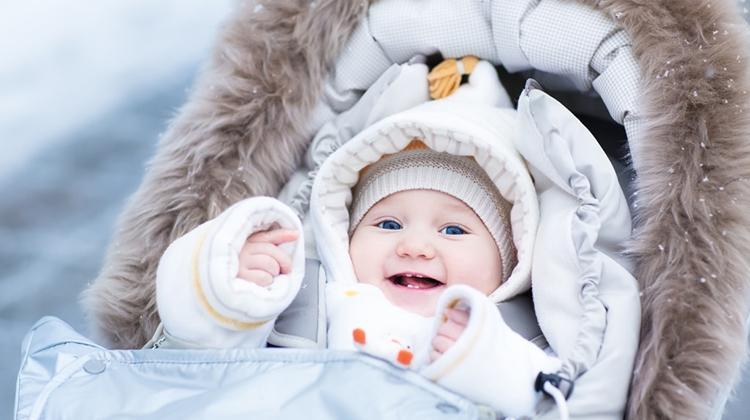какую выбрать коляску для зимнего ребенка №5