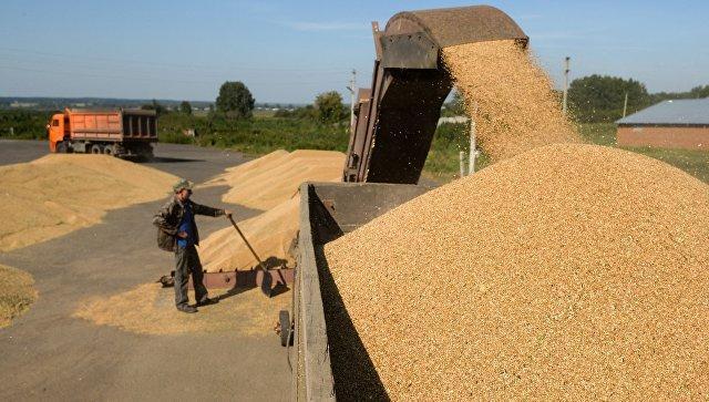Технология очистки зерна