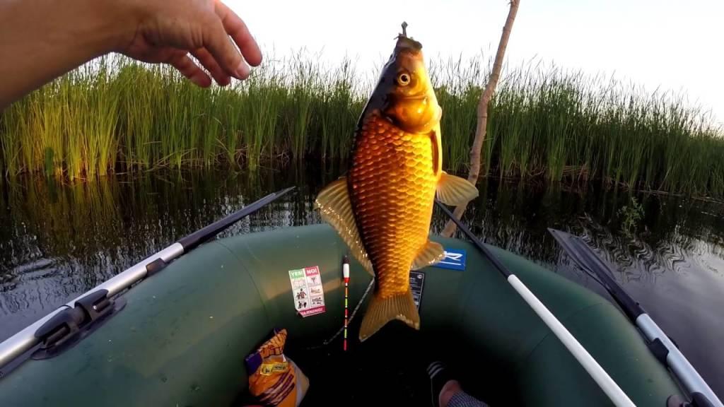 Как правильно выбрать поплавок для ловли карася