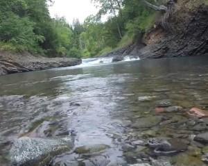 что люди делают для охраны реки